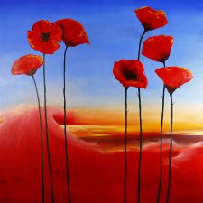 Poppies in the Outback