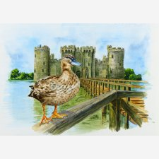 Queen of the Castle, Bodiam