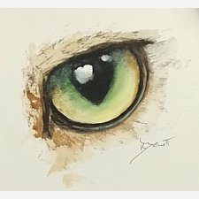 Animal Eyes 1: Cat's Eye