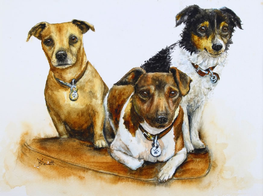 Jack Russell Trio - Click Image to Close